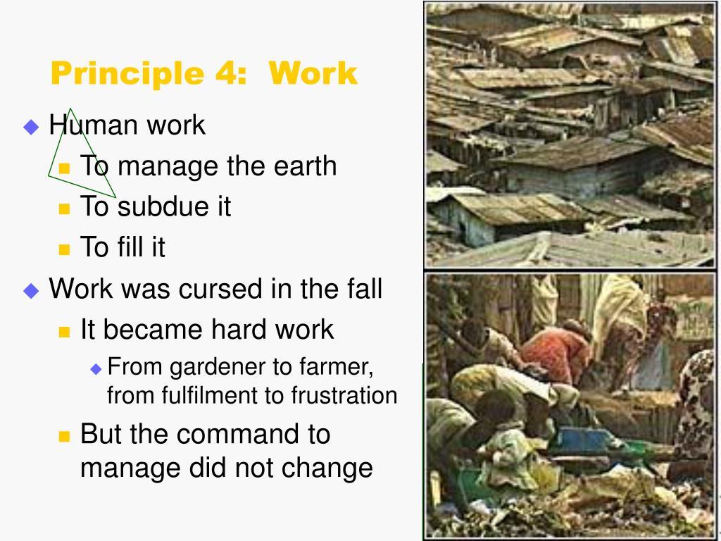 Principle 4:  Work
