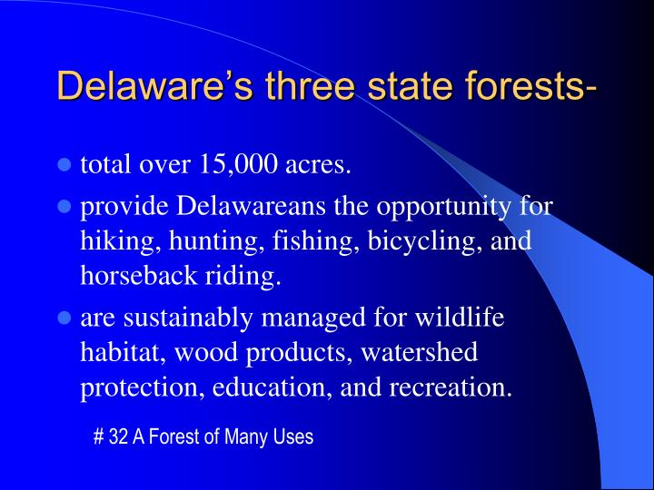 Delaware s three state forests