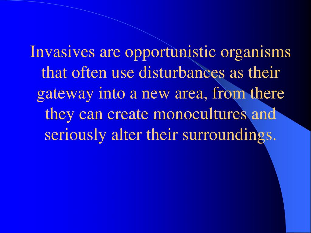 Invasives are opportunistic organisms that often use disturbances as their gateway into a new area, from there they can create monocultures and seriously alter their surroundings.