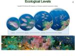 ecological levels
