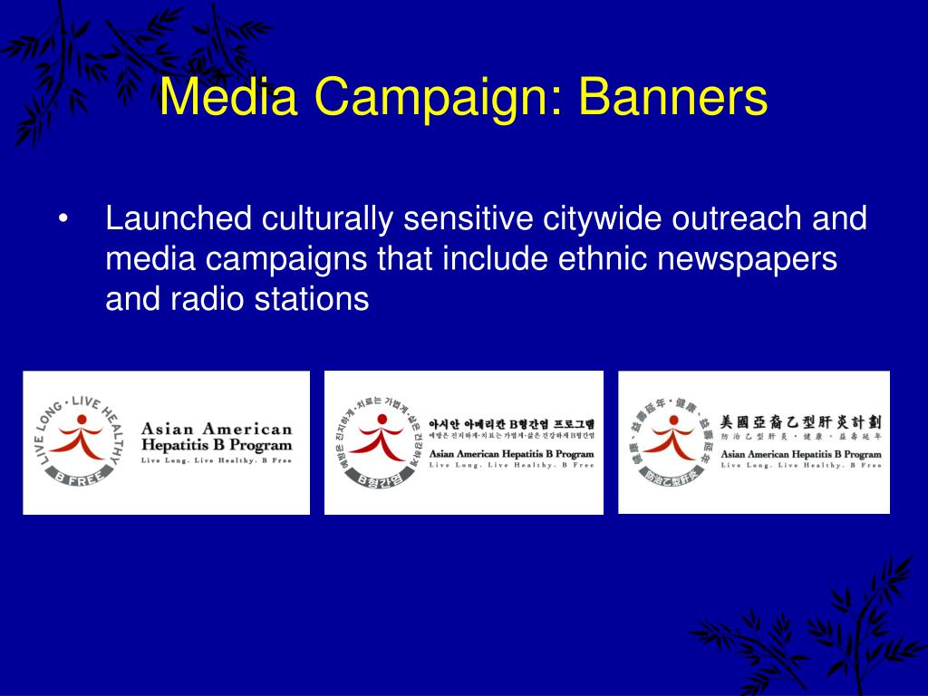 Media Campaign: Banners