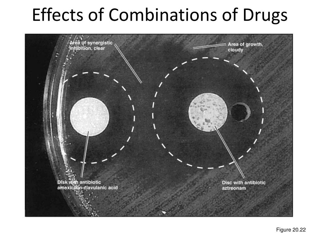 Effects of Combinations of Drugs