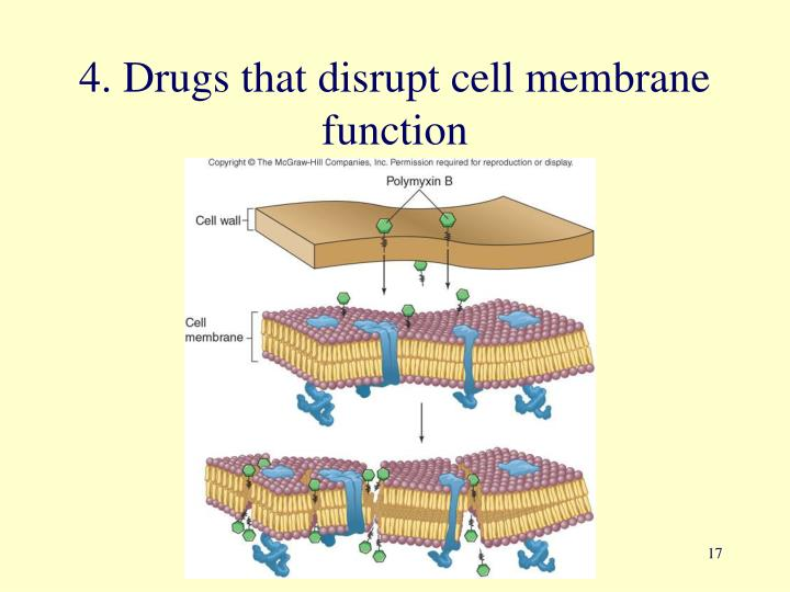4. Drugs that disrupt cell membrane function