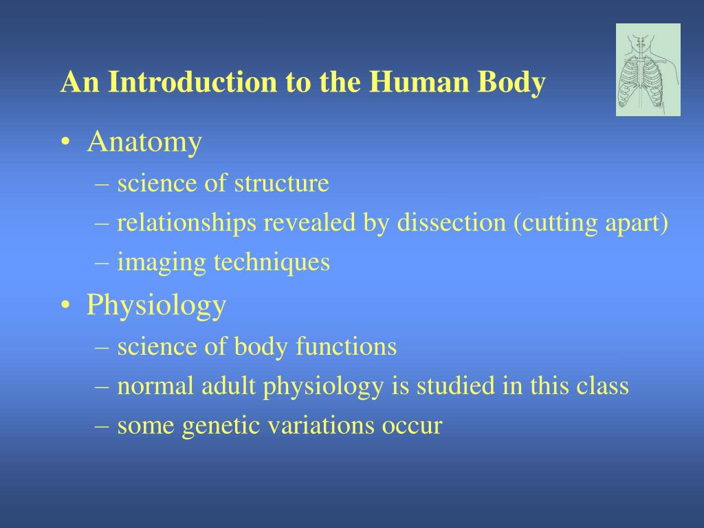 Ppt An Introduction To The Human Body Powerpoint Presentation Id