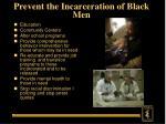 prevent the incarceration of black men