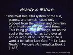 beauty in nature15