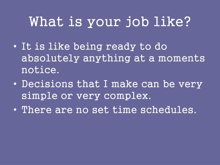 What is your job like