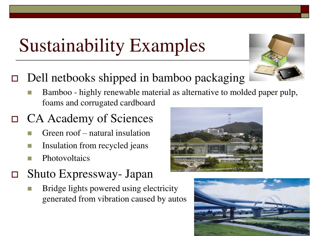 Sustainability Examples