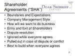 shareholder agreements sha