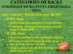 categories of kicks scrimmage kicks punts field goals trys19
