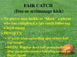 fair catch free or scrimmage kick28