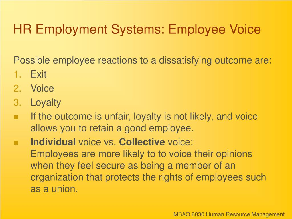 HR Employment Systems: Employee Voice