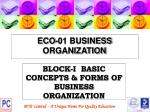eco 01 business organization