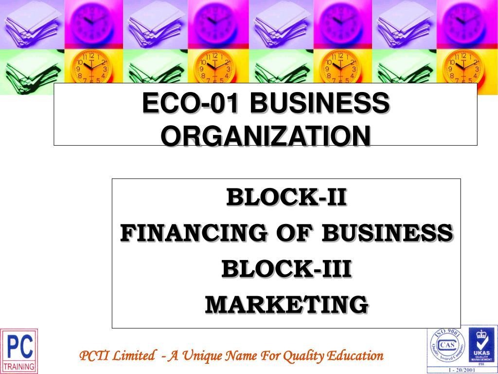 ECO-01 BUSINESS ORGANIZATION