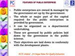 features of public enterprise