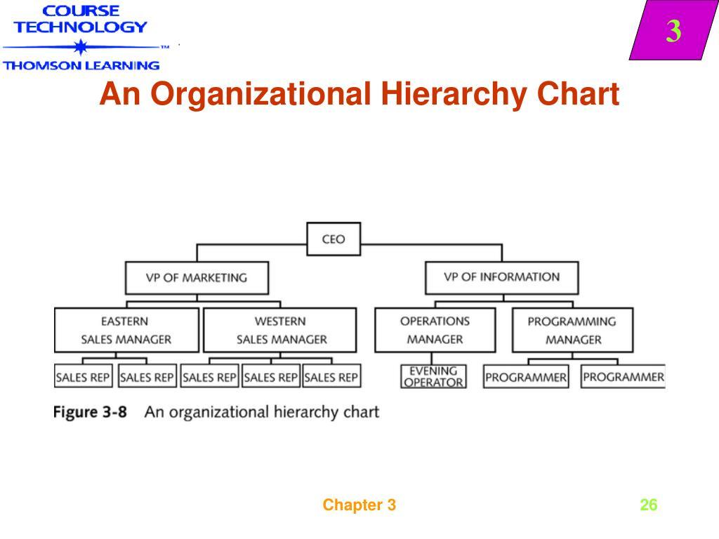 An Organizational Hierarchy Chart