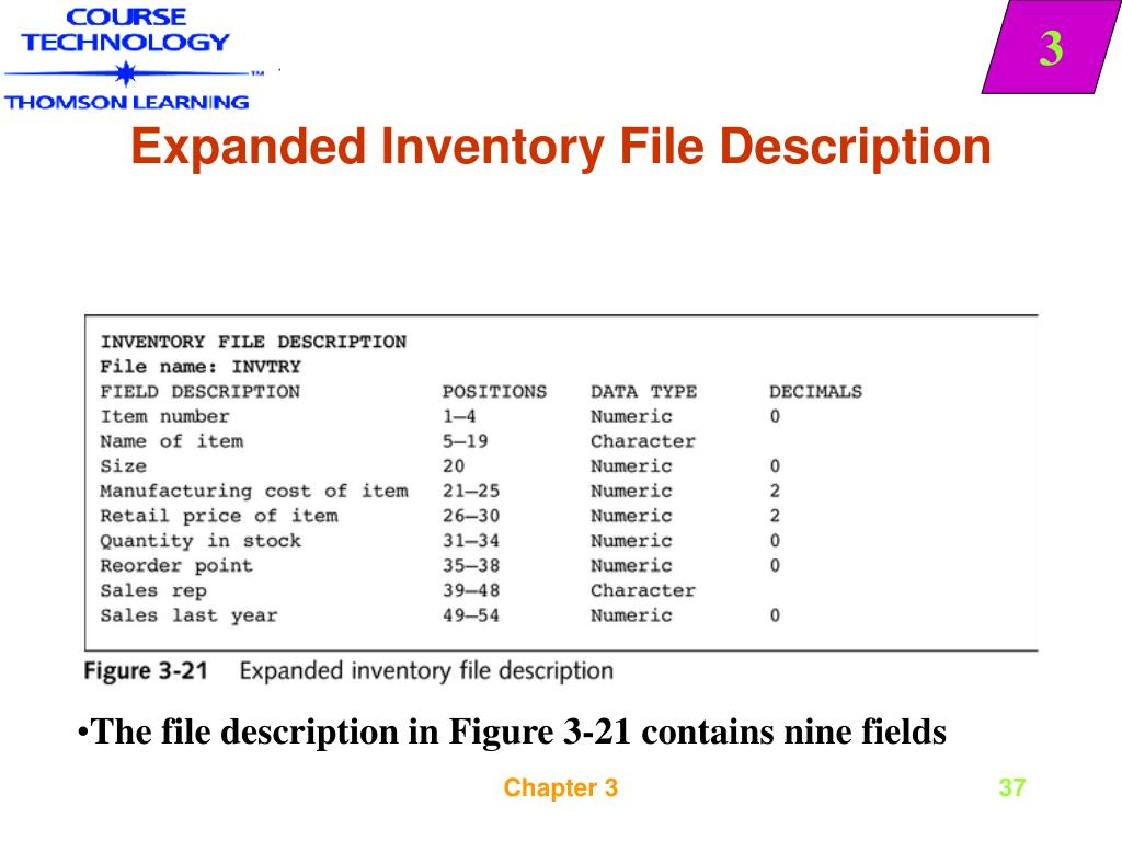Expanded Inventory File Description