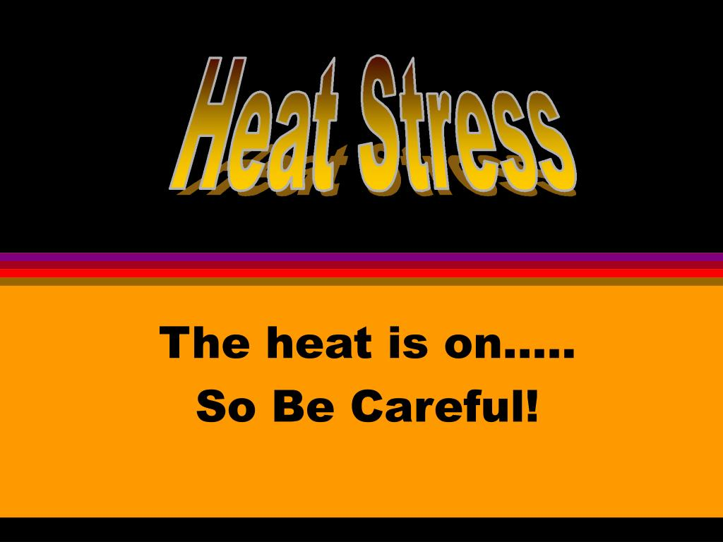 The heat is on…..