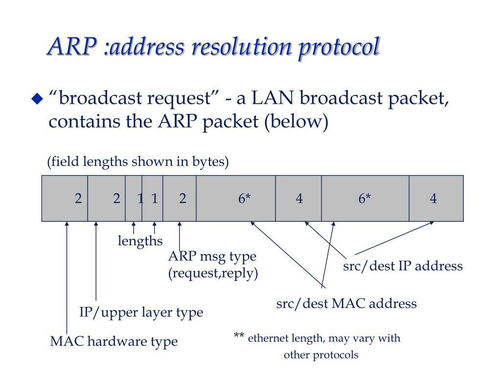 ARP :address resolution protocol