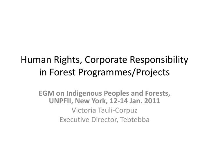 human rights corporate responsibility in forest programmes projects n.