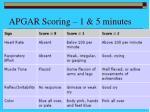 apgar scoring 1 5 minutes