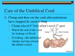 care of the umbilical cord