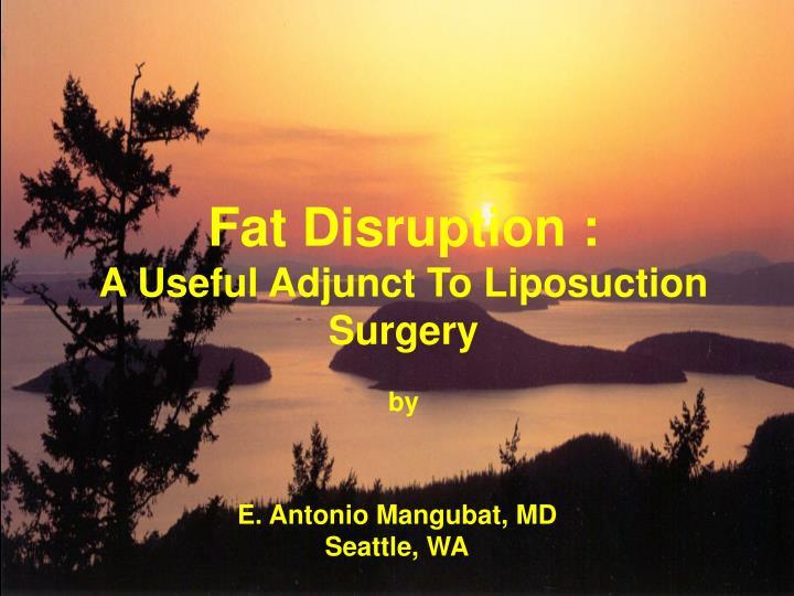 Fat Disruption :