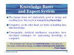knowledge bases and expert system