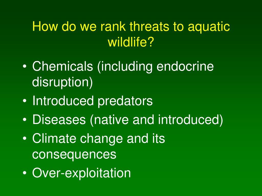 How do we rank threats to aquatic wildlife?