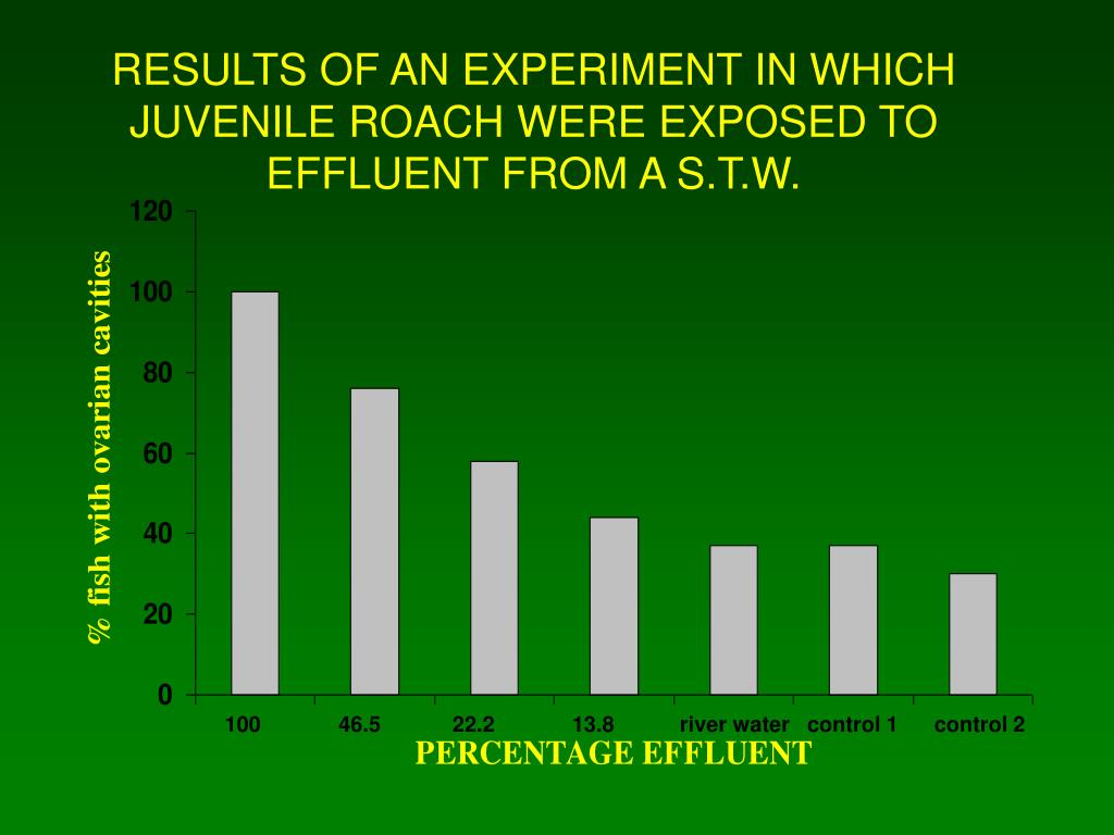 RESULTS OF AN EXPERIMENT IN WHICH JUVENILE ROACH WERE EXPOSED TO EFFLUENT FROM A S.T.W.