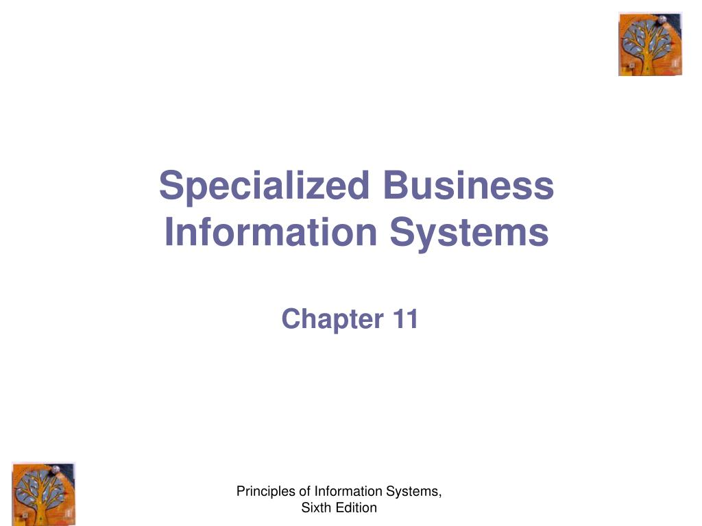 specialized business information systems l.