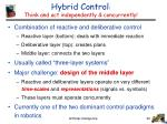 hybrid control think and act independently concurrently