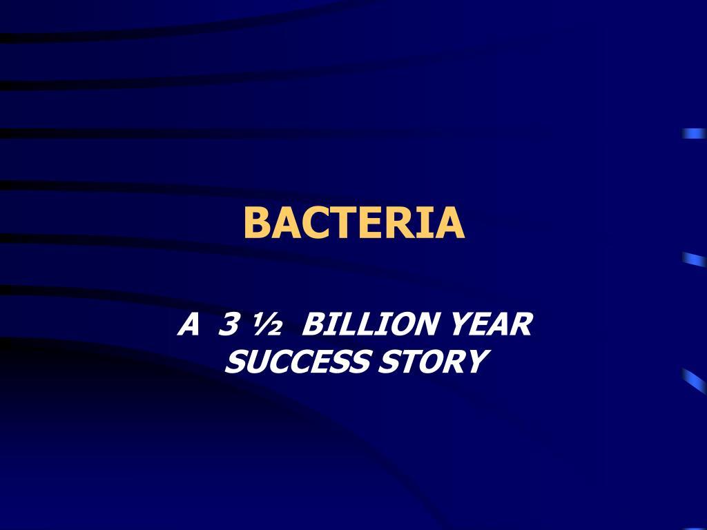 bacteria l.