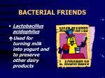 bacterial friends