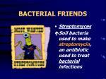 bacterial friends19