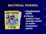 bacterial friends20