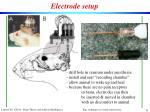 electrode setup