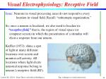visual electrophysiology receptive field