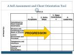 a self assessment and client orientation tool