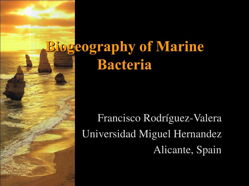 Biogeography of Marine Bacteria