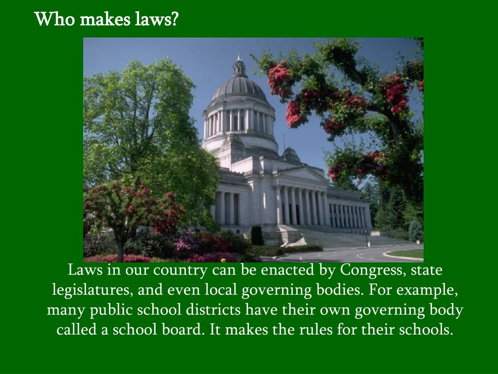 Who makes laws?