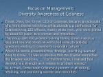 focus on management diversity awareness at celanese