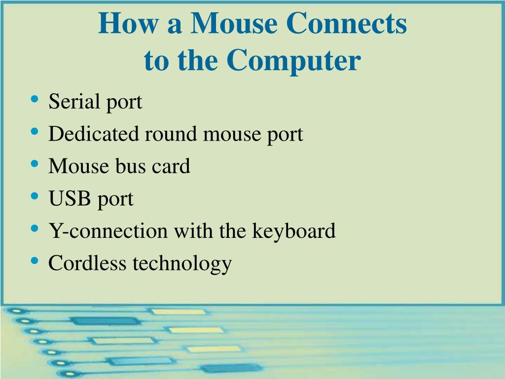 How a Mouse Connects