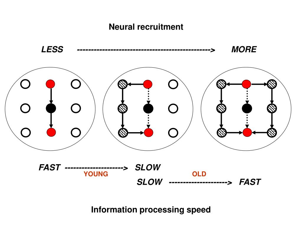 Neural recruitment