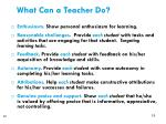 what can a teacher do