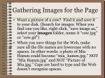 gathering images for the page