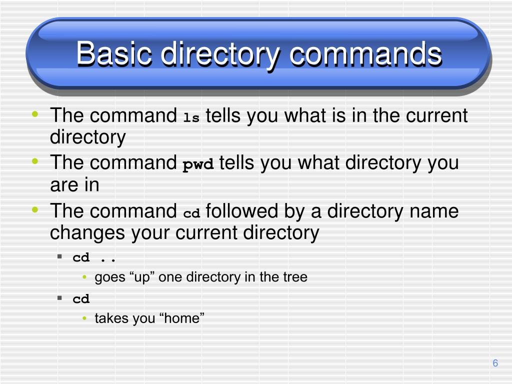 Basic directory commands