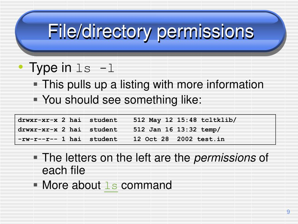 File/directory permissions