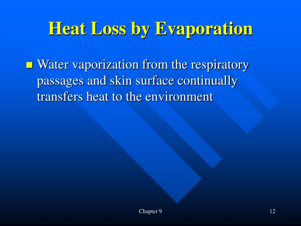 Heat Loss by Evaporation