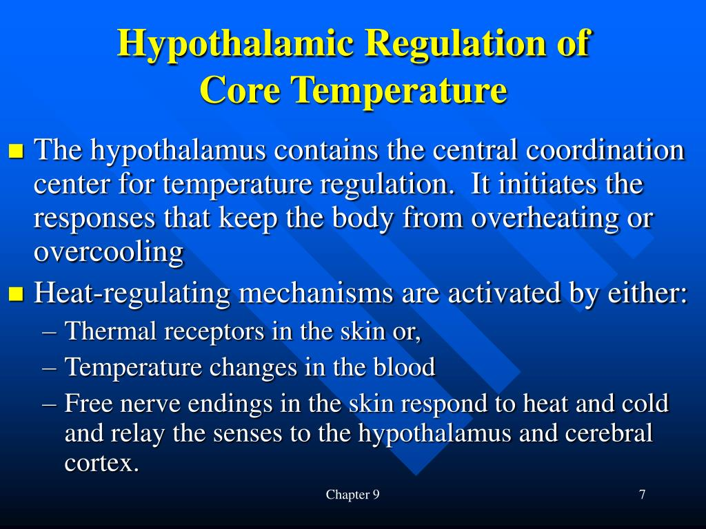 Hypothalamic Regulation of